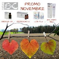 Promo Novembre 2017