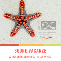 Chiusura Estiva Shop Online